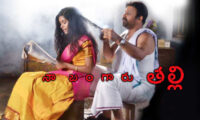 Telugu Movies Based Upon The Women-Centric Style